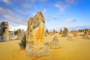 Pinnacles Landscape Photography Tour